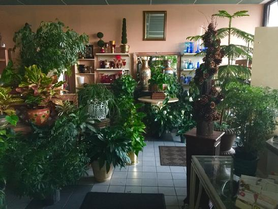The Flower Shoppe interior